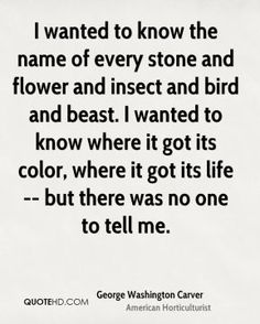 george washington carver on Pinterest   George Washington, Career ... George Washington Carver Quotes, Great Quotes, Me Quotes, I Want To Know, Love Words, To Tell, Insight, Things I Want, How To Get