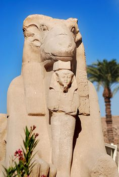 karnak If they'd worshiped the real God their outcome would be different. Bibles says they will fight each other and what it says is what always happens