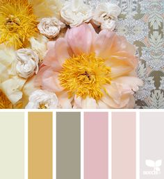 Explore Design Seeds color palettes by collection. Colour Pallette, Colour Schemes, Color Combos, Color Patterns, Color Harmony, Color Balance, Design Seeds, Palette Pantone, Creative Colour