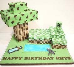 Minecraft cake with over 1,000 individually cut and pasted fondant squares.