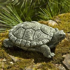 Add a lively companion to your garden with the Campania International My Pet Turtle Cast Stone Garden Statue . This petite cast stone statue features. Stone Garden Statues, Garden Stones, Tortoise As Pets, Tortoise Food, Tortoise Care, Russian Tortoise, Pet Turtle, Theme Color, Angel Statues