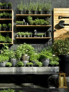 13 New Landscape Design Ideas to Steal in 2015 - Black Hardscape Garden Backdrop ;