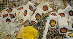 """buoys for miro 1 20"""" x 34""""  micheal zarowsky watercolour on arches paper / private collection"""