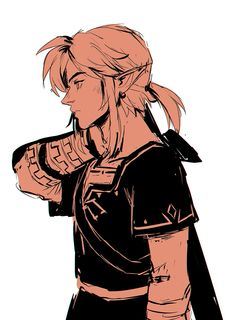 The Legend of Zelda ☆*:. The Legend Of Zelda, Legend Of Zelda Breath, Fanarts Anime, Anime Manga, Link Botw, Character Art, Character Design, Link Zelda, Video Game Art