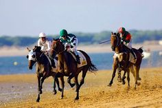 HORSE RACE in Sanlúcar de Barrameda - (Cadiz): Dates in two cycles, 7/8/9 and  21/22/23 August 2014  Sanlúcar de Barrameda is famous for its horse races which takes place along a 1,800m stretch of beach at the mouth of the Río Guadalquivir during the month of August, starting around 6.00pm.   www.magnethi.com