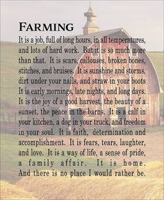 I will forever be a farmer. Farm Life Quotes, Farmer Quotes, Country Girl Quotes, Country Life, Country Girls, Country Sayings, Country Living, Girl Sayings, Western Sayings