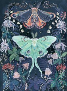 Luna Moth Art Print by claramcallister Art And Illustration, Illustrations, Fantasy Kunst, Fantasy Art, Painting Inspiration, Art Inspo, Kunst Inspo, Insect Art, Butterfly Art