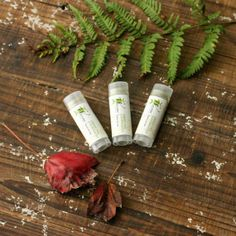 all natural Green Tea lip balm #handmade by Winsome & Green @Christa at Winsome & Green