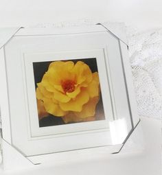 1980 Vintage Rose Litho Photo Art and by shoponwebstreet on Etsy