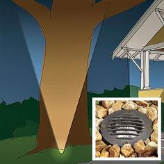 Illustration: Arthur Mount | thisoldhouse.com | from All About Landscape Lighting