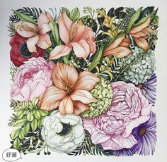 Another beauty from xx Flowers For You, Colorful Flowers, Tropical Flowers, Adult Coloring, Coloring Books, Mandala Coloring Pages, Color Pencil Art, Floral Illustrations, Colorful Drawings