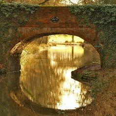 Baiseley's Bridge, Basingstoke canal