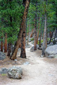 Estes Park Estes Park Colorado, Colorado Rockies, Mountain Photography, Rocky Mountain National Park, Summer Art, Go Camping, Rocky Mountains, The Great Outdoors, Places To Go