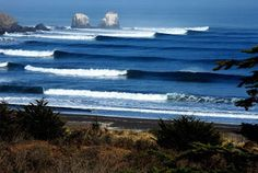 Surfers from around the world are waiting to see if the famous Mavericks surf contest will happen next week it will be a historic moment for the Half Moon Bay competition this year marks the first … Surfing Pictures, Surfing Images, Alaska Adventures, Surf Design, California Surf, Surf City, South America, Places To Go, Around The Worlds