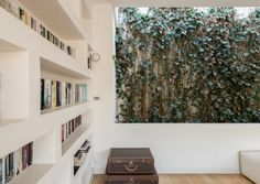 There is a rise in #livingwalls be included in home spaces. Check this out. #biophilia http://qoo.ly/hmsui