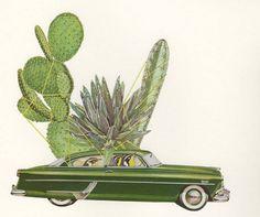 Birds Plants and Vintage Cars Collages – Fubiz Media