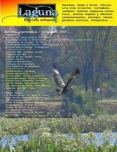 Laguna - revista urbana: diciembre 2015