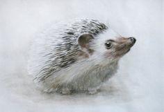 Hedgehog Watercolor Painting. by:-Madara