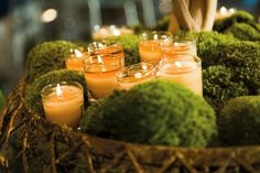 Moss Centerpiece with candle