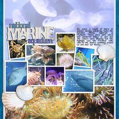 national marine aquarium - Scrapbook.com
