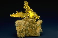 A specimen of gold from the United States. Part of the National Mineral Collection. Raw Gemstones, Rocks And Gems, Gold Coins, Minerals, Pure Products, Arrow Keys, Close Image, Fossils, Gallery