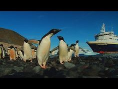 Destination 7 Continents: 2014 Expeditions Moments From the National Geograp...