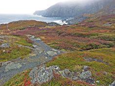 St. Anthony, Newfoundland, Canada (CA)