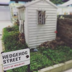 Hedgehog Street Garden #firstlightlandscaping www.firstlightlandscaping.co.uk T Lights, Letter Board, Wildlife, Gardens, Lettering, Landscape, Street, City, Scenery