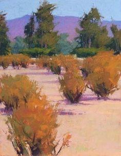VALLEY FLOOR by Susan Ogilvie Pastel