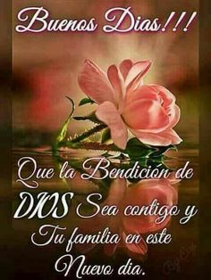 May the blessings of God be with you and your family on this day. Good Morning Messages, Good Morning Greetings, Good Morning Quotes, Good Morning Good Night, Morning Wish, Spanish Prayers, Spanish Greetings, Christian Verses, Happy Wishes