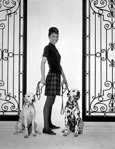 33-2306 Audrey Hepburn