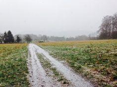 Laufend gebloggt: Gutenbrunnen, Bierbach, Sieben Fichten