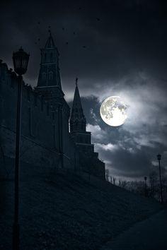 Castle by moon light