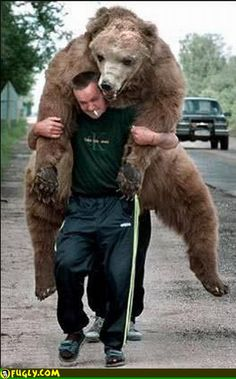 Funny_Photo_Grizzly_on_back