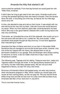 "First story in my book ""They ALL DESERVE Love, Tails From the Past to the Present"" Amanda-the kitty that started it all! Page 2"