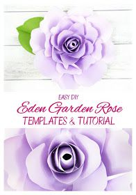 Easy DIY paper flower Eden style rose with templates and full video tutorial.