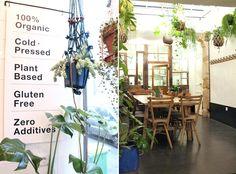 Wild and The Moon café healthy et Slow food à Paris dans le Marais.   Plante suspendue, suspension en macramé. /Wild and The Moon healthy coffee and Slow food in Paris in the Marais.  Suspended plant, macramé suspension.