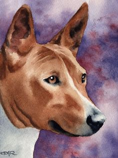 BASENJI Dog Art Print Signed by Artist DJ Rogers by k9artgallery   WATERCOLOR