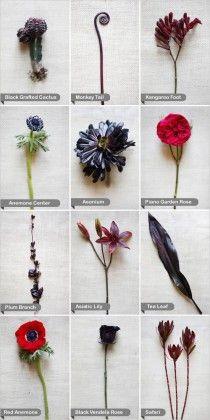 Fleurs en noir et rouge