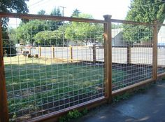 Contemporary Hot Wire Fence For Cats