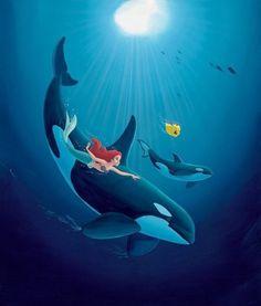 Ariel with orcas 〖 Disney Ariel Flounder The Little Mermaid orca killer whale Wyland art 〗 Disney Pixar, Film Disney, Disney Fan Art, Disney And Dreamworks, Disney Little Mermaids, Ariel The Little Mermaid, Mermaids And Mermen, Disney Girls, Ariel Mermaid