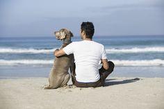 ¿Adoptarías a esta adorable pareja para completar la preciosa estampa? #hombresconmascota #adoptauntio #cachorros