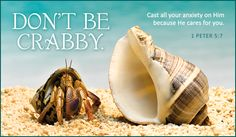 Free Don't Be Crabby eCard - eMail Free Personalized Care & Encouragement Cards Online