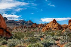 Sandstone Valley :at http://robert-bales.artistwebsites.com/