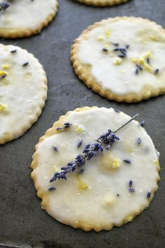 lemon glazed lavender and lemon shortbread cookies - twigg studios - Cookie madness! - i love shortbread, i decided to make these really thin so they would just melt in the mouth. Lavender And Lemon, Lavender Recipes, Lavender Cookie Recipe, Lemon Thyme Recipes, Edible Lavender, Lavender Cake, Lavender Buds, Baking Recipes, Cookie Recipes