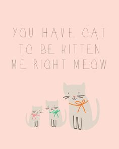 Today's printable is just a silly quote my sister says all the time. It never fails to make me giggle. I mean, seriously? You have cat to be kitten me right meow! Download by clicking through!