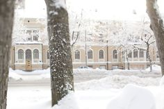 Vaasa, Photo by Katja Lösönen