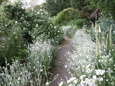 Den Vita Trädgården  The white garden