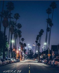 New travel california los angeles beautiful places 15 Ideas California Palm Trees, California Dreamin', California Camping, Camping Photography, City Photography, Los Angeles Palm Trees, Los Angeles Wallpaper, City Of Angels, Aesthetic Pictures
