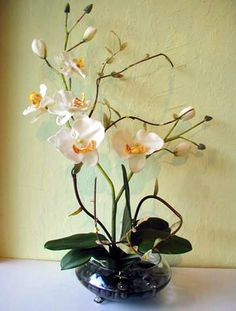 Silk & Artificial Orchid Flower Arrangements - Designer quality, affordable prices for all silk flowers, artificial palms and ornamental trees. Tropical Flower Arrangements, Orchid Arrangements, Tropical Flowers, Artificial Orchids, Orchids Garden, Silk Plants, Phalaenopsis Orchid, Silk Flowers, Flower Designs